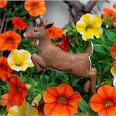 Whitetail Buck jumping in the orange and yellow Petunias.