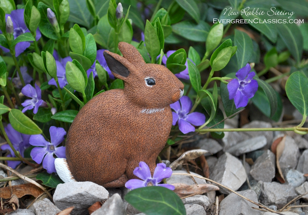 Cottontail Rabbit in bed of purple flowers and stones.