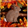 Hand painted Cottontail Rabbit sitting autumn decoration.